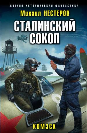 Сталинский сокол #1. Комэск